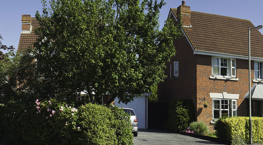 Trees Property Subsidence Claims